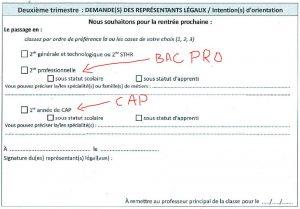 CAP ou BAC PRO ?